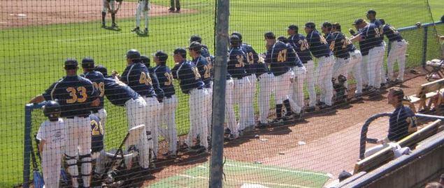 The Cal baseball team watching during a home game against the Oregon Ducks.